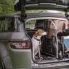 Turvallista automatkaa myös koirakavereille